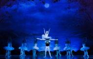 IL LAGO DEI CIGNI con il Balletto di San Pietroburgo Classical Tradition