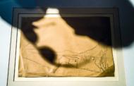 """MARCHE PALCOSCENICO APERTO. FESTIVAL DEL TEATRO SENZA TEATRI: DOMENICA 28 FEBBRAIO NUMERI 11 PRESENTA """"ALTER EGO"""", UN LAVORO SU OSVALDO LICINI"""
